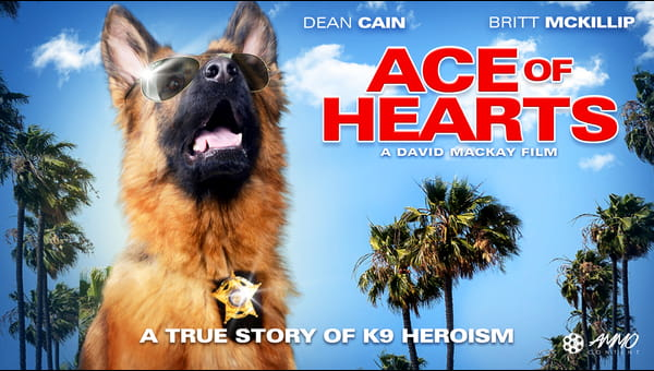 Ace Of Hearts on FREECABLE TV