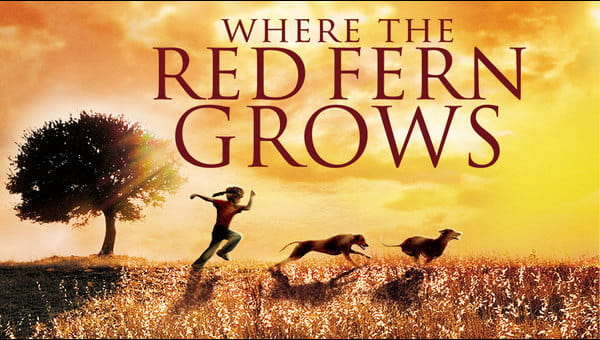 Where The Red Fern Grows on FREECABLE TV