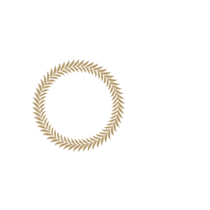 CineLife on FREECABLE TV